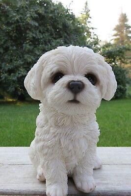 (Maltese Puppy Dog Resin Figure Garden Home Decor New 6.75 in. White Statue Dogs )