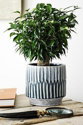Ivyline Onno Planter Flower Plant Pot Embossed Design in Denim Blue 17cm