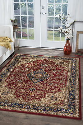 Red Traditional - Persian/Oriental Leaves Vines Curves Area Rug Medallion