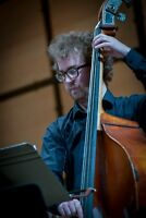 Offering in-home double bass/electric bass lessons