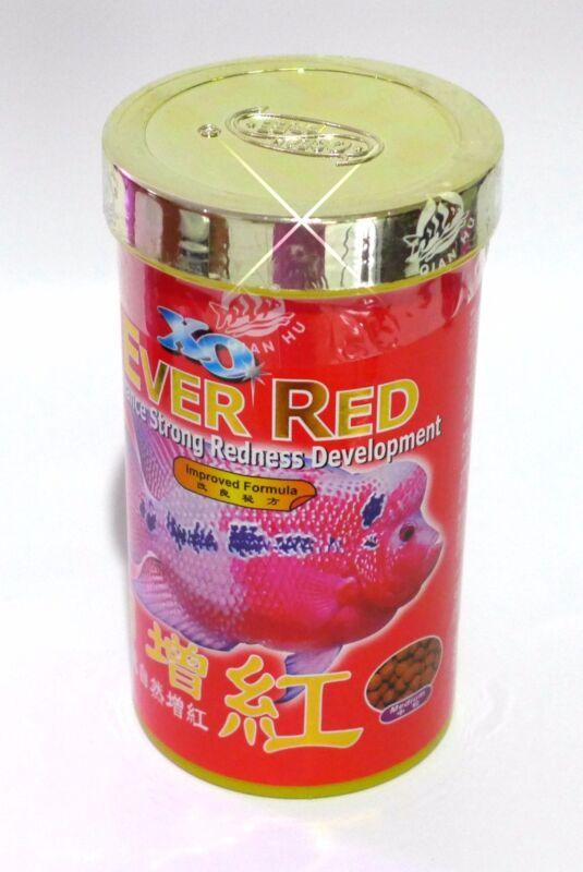Xo Ever Red Flowerhorn - 120 Grams - Usa Seller
