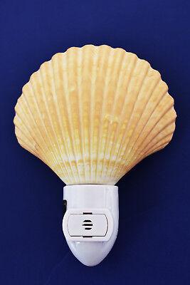 Real Seashell Night Light Mexican Deep Scallop Shell Nautical Decor - Automatic. - Seashell Night Light