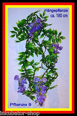 Plastikpflanze,Dekoration,Aquarium,Terrarium,Kunstpflanze,Dekopflanze,