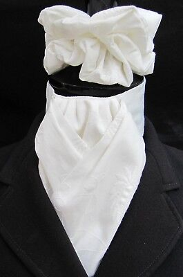 Ready Tied Ivory Embroidered Paisley Cotton Dressage Riding Stock & Scrunchie