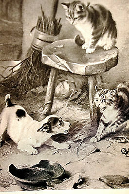 """W. Hunt TWO CATS Standoff ONE PUPPY  """"At Bay"""" 1897 Antique DOG Art Print Matted"""