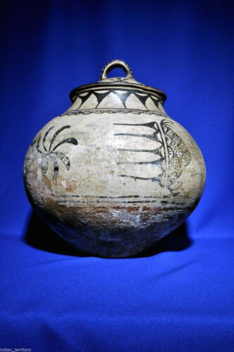 "Rare C1880 Historic Powhoge (tesuque) Olla 13"" X 12""  Lidded Pottery Jar /olla"