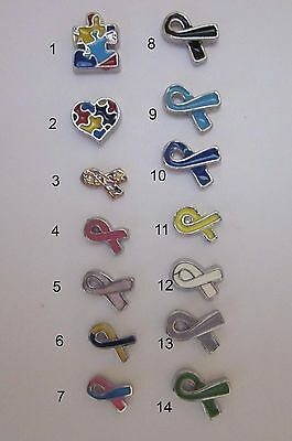 BUY 5/GET 10 FREE! Causes/Cancer/Autism Ribbon Floating Charms for Glass Locket