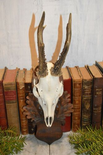 Vintage German Black Forest Deer Antlers Carved Wood Shield Trophy Mount