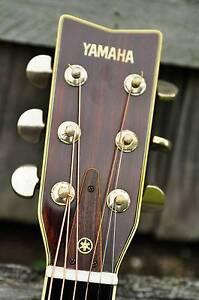 Selection of Vintage MIJ Acoustic Guitars Springwood Logan Area Preview