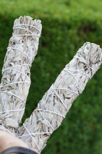 2 LARGE White Sage Stick 8