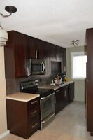 2 bed/1bath 2wvwl townhouse with utilities