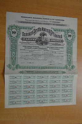 Egypt -Sednaoui Zarifaa Nahas&Co Ltd Certificates 50 Deferred shares Specimen
