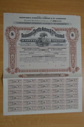 Egypt - Sednaoui Zarifaa Nahas&Co Ltd Certificates 5 Deferred shares Specimen