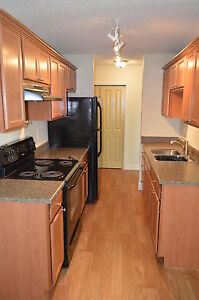 Renovated One Bedroom Apartment Available - Call (306)314-2035