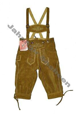 Kniebund Trachten Lederhose Kinder Neu Echt Leder in farbe Olive Gr.80-164 online kaufen