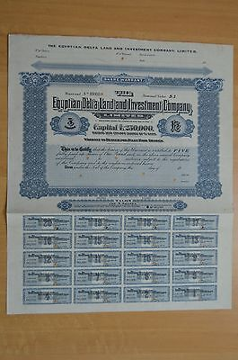 Egyptian Delta Land and Investment Co. Ltd 5  Specimen Bearer Warrants