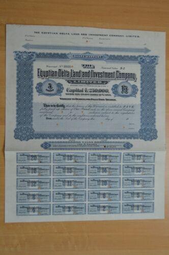 Egyptian Delta Land and Investment Co. Ltd 5  Specimen Bearer Warrants