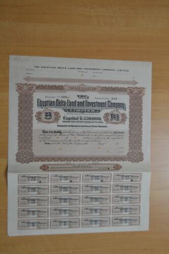 Egyptian Delta Land and Investment Co. Ltd 25 Specimen Bearer Warrants