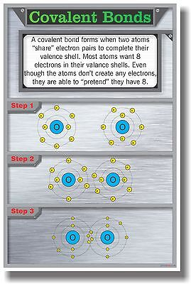 Covalent Bonds   New Classroom Science Poster