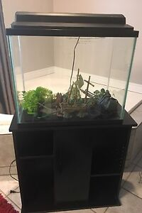 Fish tank, accessories and stand for sale
