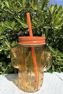New Orange Cactus Glass Mason Jar Tumbler Plastic Straw Cup Party Drinking -