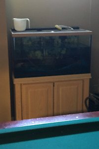 Aquarium 65 Gallon.  3 feet long by 18 inches by 21 inches