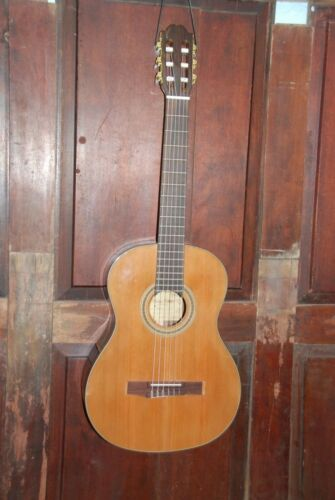 Francisco Domingo FG-17 Solid Top Classical Nylon Strng Rosewood Acoustic Guitar