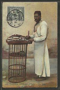 Colonie-1910-Eritrea-Sassone-34-isolato-Cartolina-da-Massaua-Firmata-COL009