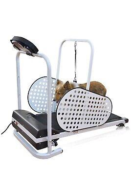 Dog Treadmill Folds Portable Holds 179lbs
