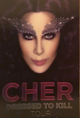 "CHER Dressed to Kill Tour 2014 3D Hologram Photo Board 11"" x 17"""
