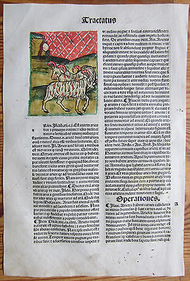 Incunable Leaf Hortus Sanitatis Zoology Ram Colored Woodcut Venice - 1500