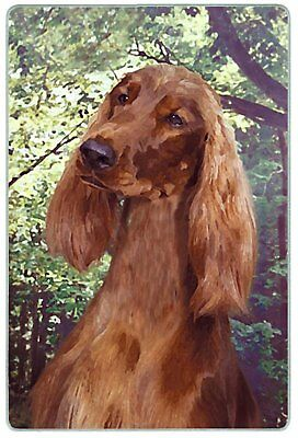 Canine Designs Irish Setter Tempered Glass Cutting Board fem