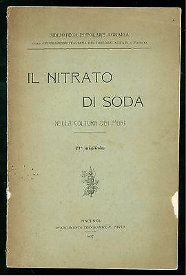BIBLIOTECA POPOLARE IL NITRATO DI SODA COLTURA DEI FIORI AGRICOLTURA 1907