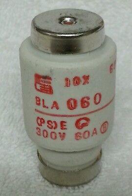 Fuji Electric Bla060 600v 60a Fuse - Nos