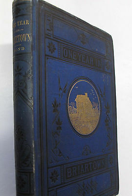 Lewis H  Bond One Year Briartown Illus  Humor Comedy Satire Midwest First 1879