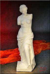 Griechische Antik Skulptur Venus Dame Statue Büste Gartenfigur Edel Figur