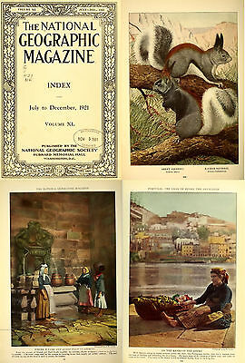 350 Rare Issues Of The National Geographic  1889 1922    First 34 Years On Dvd