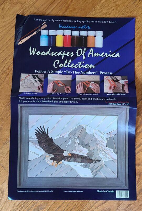 Woodscapes of America #1150 Bald Eagle 15x20 Painting Wood Art Kit