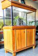 3ft fishtank/ accessories Terrigal Gosford Area Preview