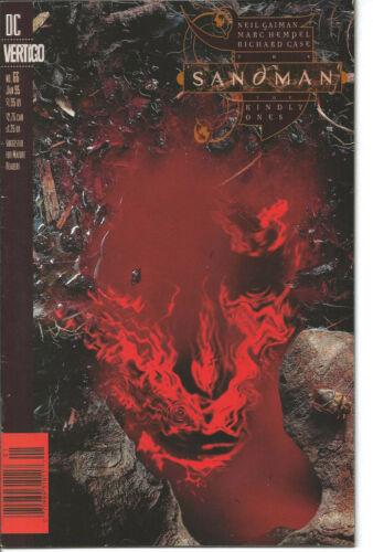 Sandman 66 Newsstand Variant Dream DC Vertigo Neil Gaiman 1995 The Kindly Ones