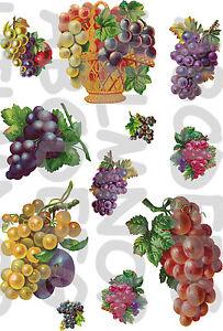 11 adesivi grappoli uva frutta grapes stickers for Stickers adesivi per piastrelle