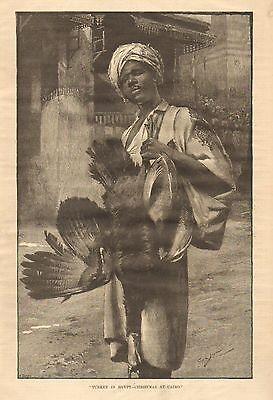 Turkey In Egypt - Christmas At Cairo, Street Vendor, Vintage 1886 Antique Print