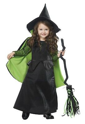 California Costumes Wicked Witch of Oz Toddler Halloween Costume Party - Toddler Halloween Witch Costume