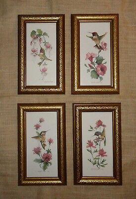4 CAROLYN SHORES WRIGHT Hummingbird Prints WOOD FRAMES w/GLASS Wall Art Decor