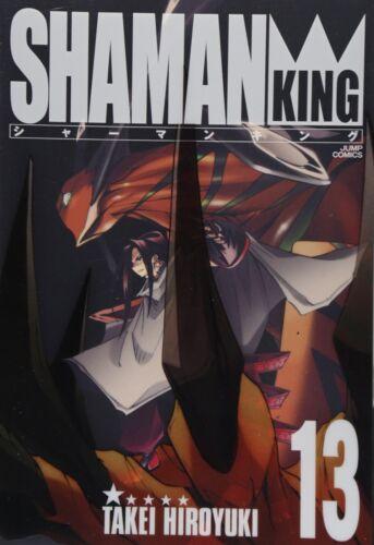 Hiroyuki Takei manga: Shaman King Kanzenban vol.13 Japan