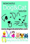 dogcatncle