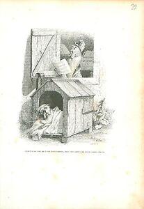 Bulldog anglais Bulldog COQ ROOSTER ANTHROPOMORPHISM 1842 GRAVURE OLD PRINT