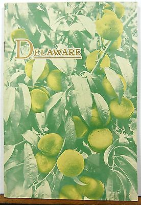 1932 Delaware vintage informational booklet with road map b