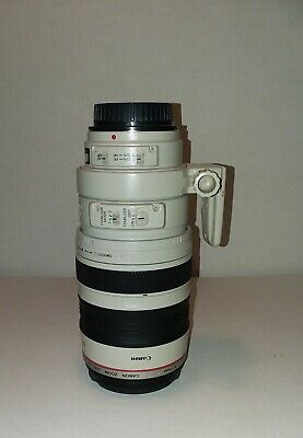 Canon EF 100-400mm f/4.5-5.6 IS L USM