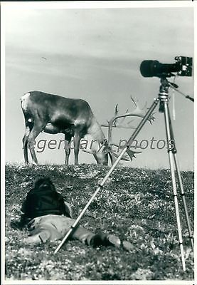 1990 Photographer and